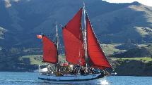 Sailing & Dolphin Watch Tour - 3 Hours - Akaroa Harbour