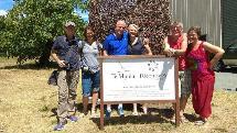 Half Day Wine Tour - Tasman Tours