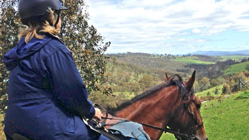 Go off the beaten track and get back to nature as you explore the best of Tasmania's beautiful South East bushland and Mount Hobbs from the back of a horse…