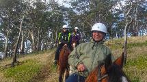 Bush Rangers Horse Riding Adventure – 2 Hours