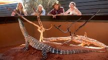 Alice Springs Reptile Centre - Entry