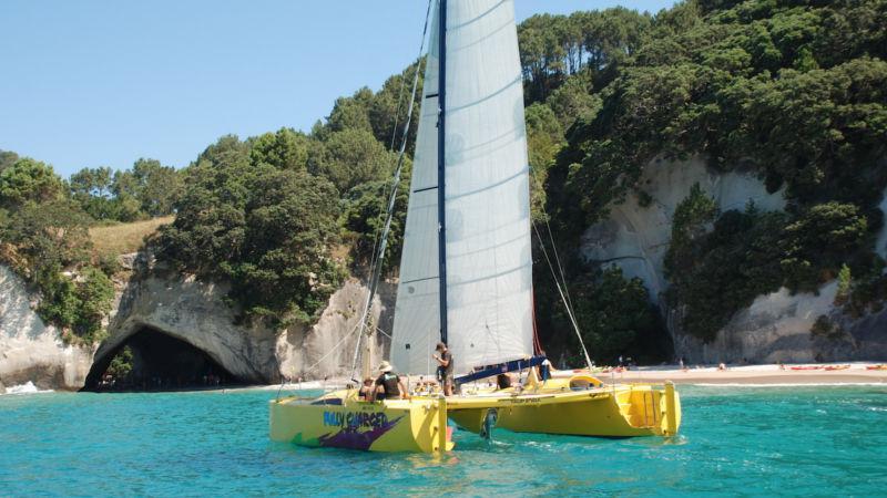 Sailing & Cruises