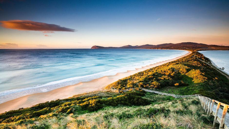 See for yourself the magic of Bruny Island with its picturesque landscape, impressive views and rainforest trails on this full-day guided tour.