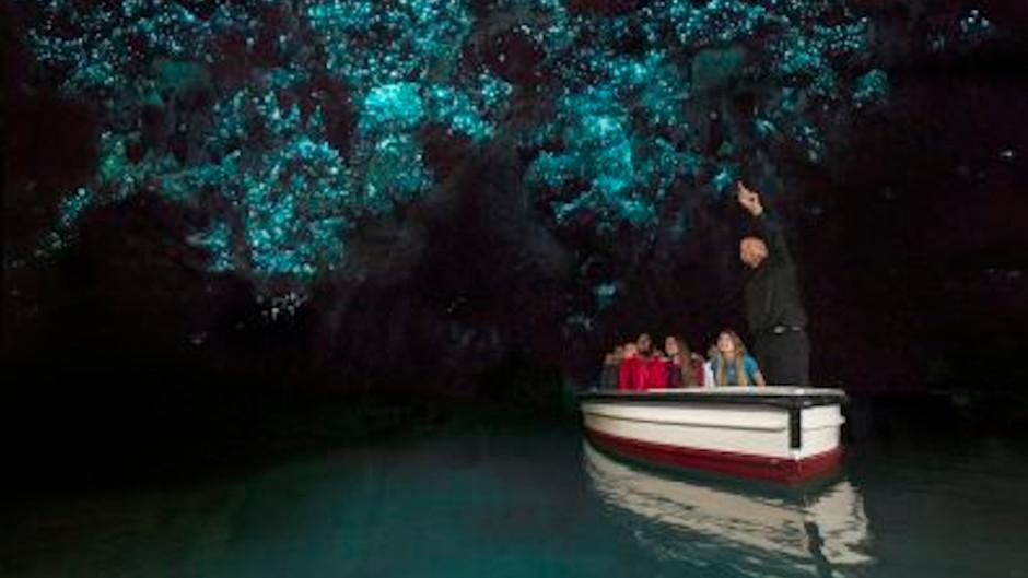 Waitomo Glowworm Cave Boat Tour