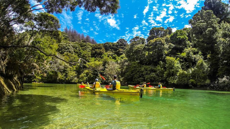 Abel Tasman Guided Kayak Adventure