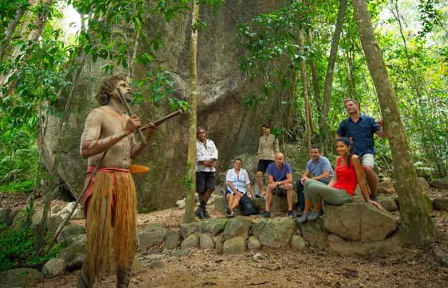 Tropic Wings Tours Cairns Port Douglas