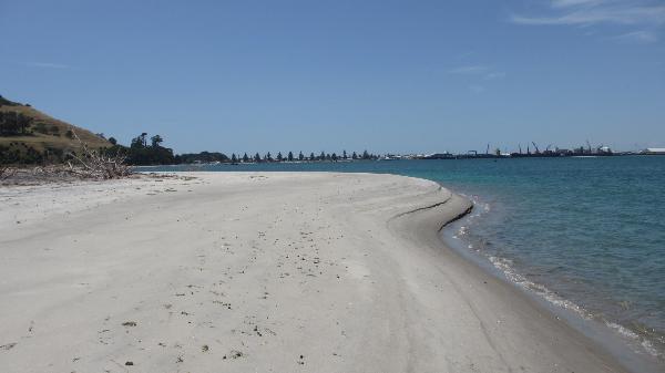 Matakana Island beach