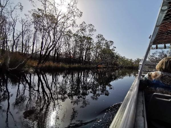 Everglades cruise