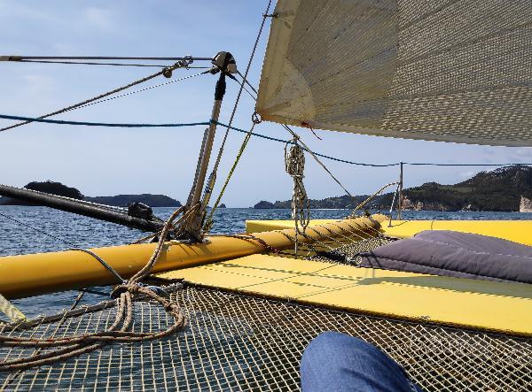 Coromandel Morning Sail
