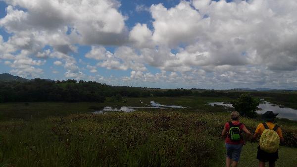 Croc spotting hill