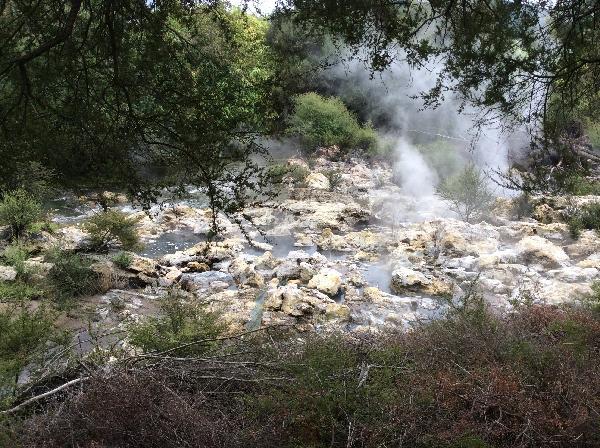 Whaka Geothermal Walking Trails - Whakarewarewa