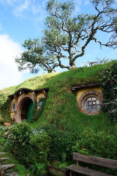 Hobbiton and Watomo Cave