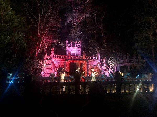 パロネラパークでは期間限定の弦楽器の演奏を楽しむことができました。