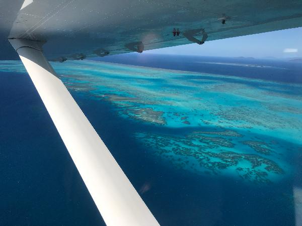 Would 100% do it again and again, great staff awesome new plane- stunning reef Birds eye view