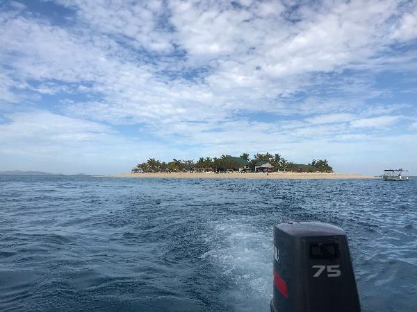 Finding nemo cruise