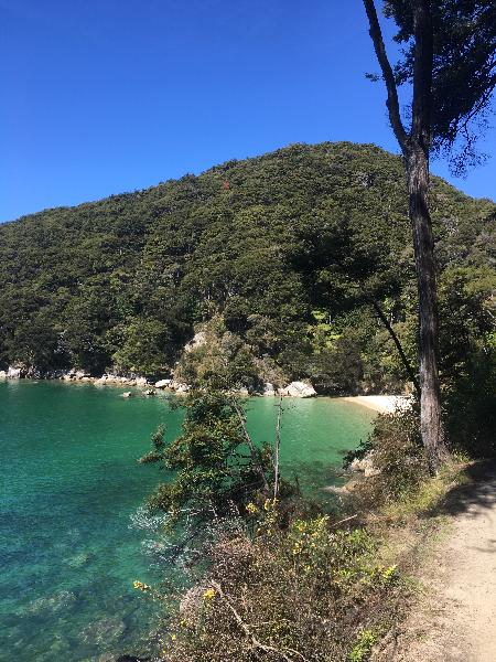 Gorgeous day in the Abel Tasman